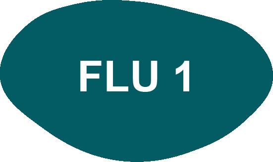 Utbildning i förändringsledning - FLU 1
