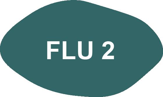 Utbildningar i förändringsledning - FLU 2