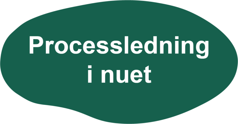 ZP Processledning i nuet
